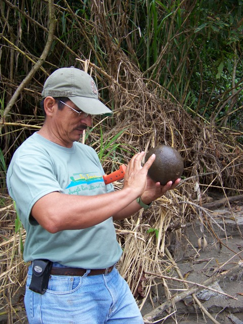 Carlos shows off a cannon ball size smooth stone from the river bed.